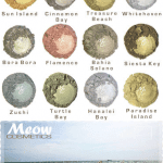 Meow Castaway Collection – Swatches & Review