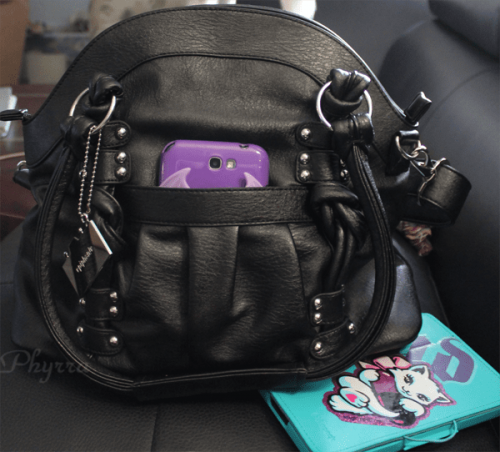 Epiphanie Black Lola Camera Handbag Review