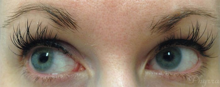 Xtreme Lash Extensions after 2 weeks