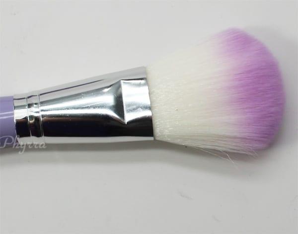 Crown Brush Pro Powder