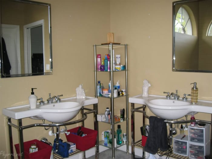 Two Sinks No Storage