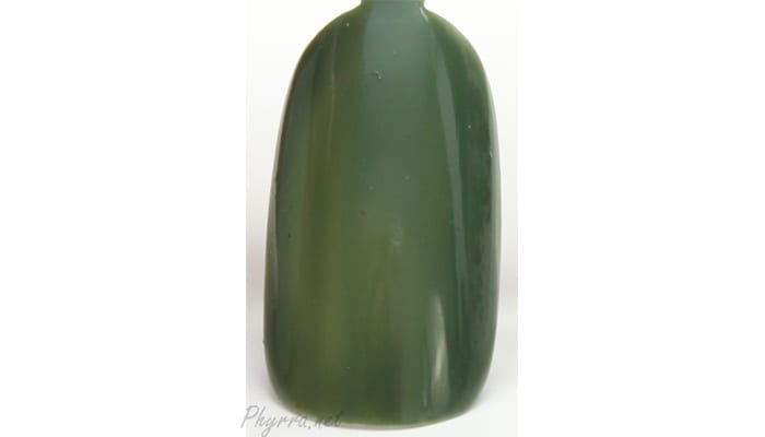Pretty and Polished Hunter Green (Get It?) Swatch