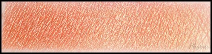 Anastasia Beverly Hills Artist Palette Orange You Fancy Swatch