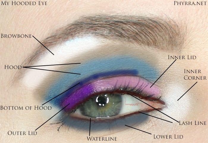 Hooded Eye Makeup Diagram.Celebrity Inspired Hooded Eye Makeup Tips