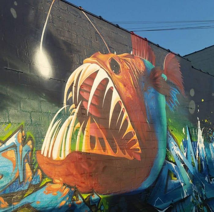 The Lantern Fish