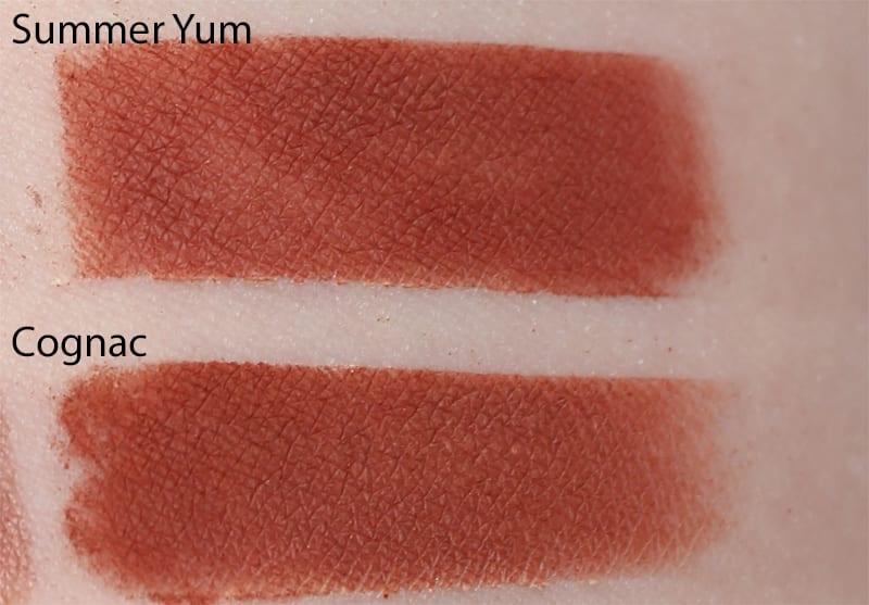 Silk Naturals Cognac dupe for Too Faced Summer Yum swatch