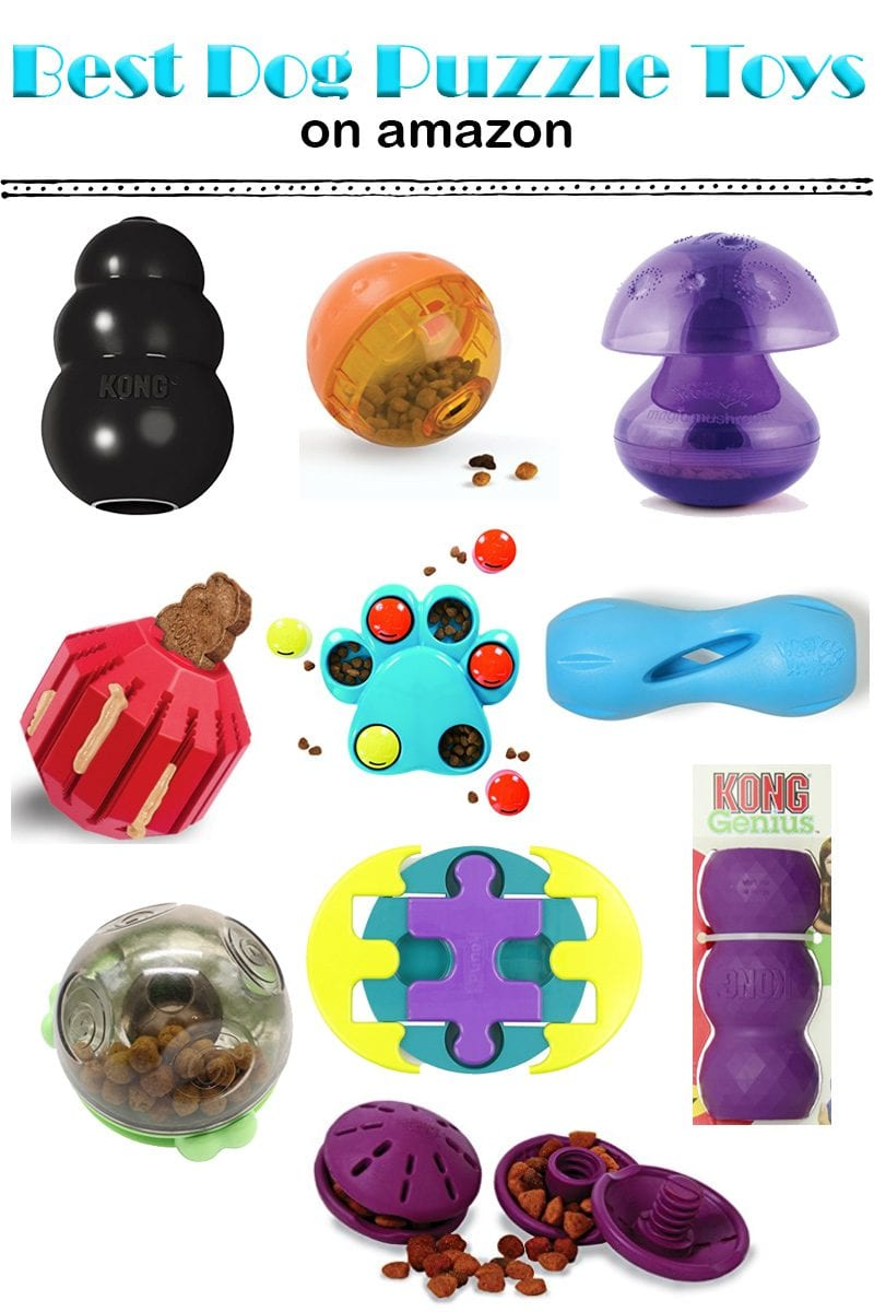 Dog Toys Top 10 Best Puzzle Toys On Amazon For Your Smart Dog