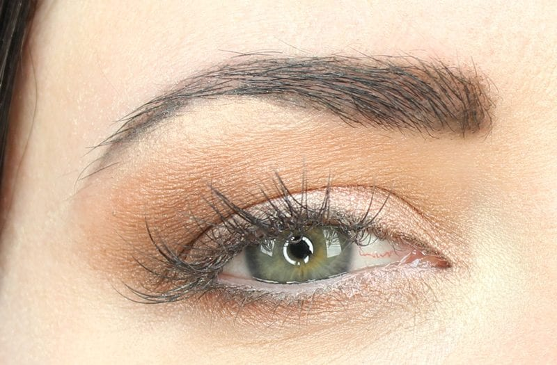 Urban Decay Basquiat Gold Griot Brown Look