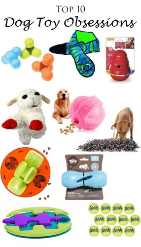 Nyx's Top 10 Dog Toy Obsessions
