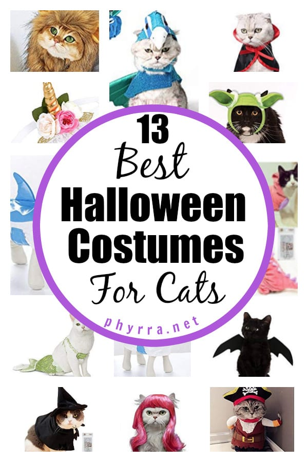13 Best Halloween Costumes For Cats