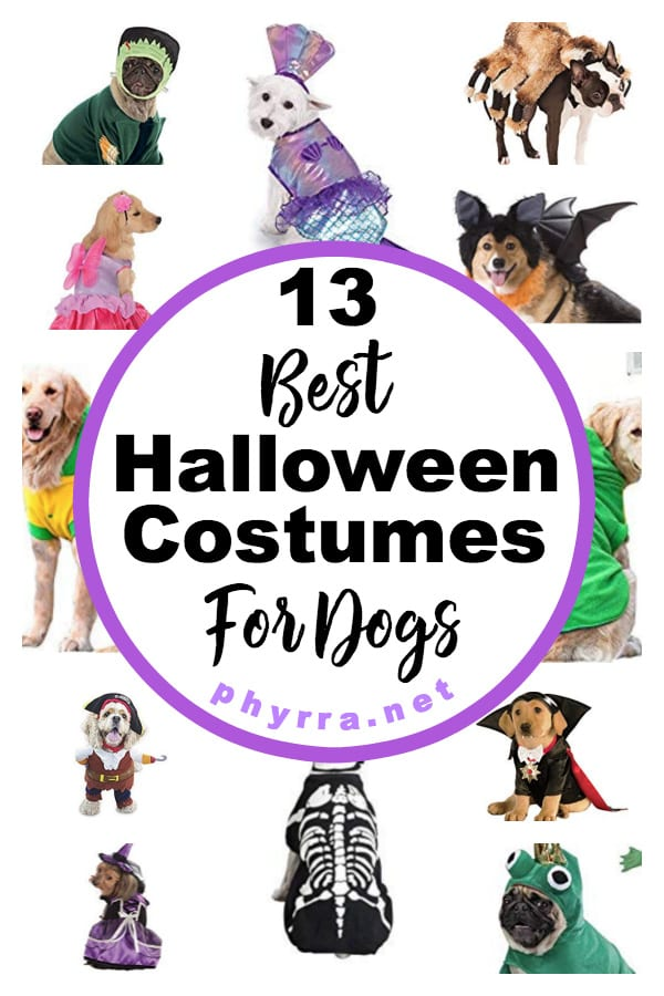 13 Best Halloween Costumes For Dogs