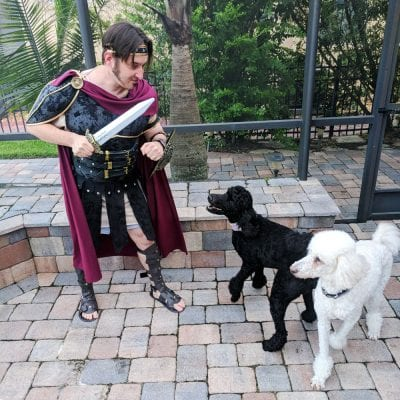 Ray dressed as a Gladiator fighting the poodle monsters