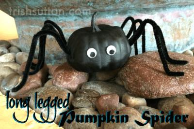 DIY Long Legged Pumpkin Spider by Trish Sutton