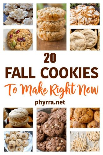 20 Fall Cookies To Make Right Now