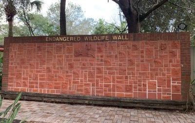 Endangered Wildlife Wall